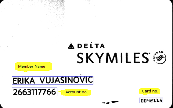 ocr-software-service-skymiles-card-3